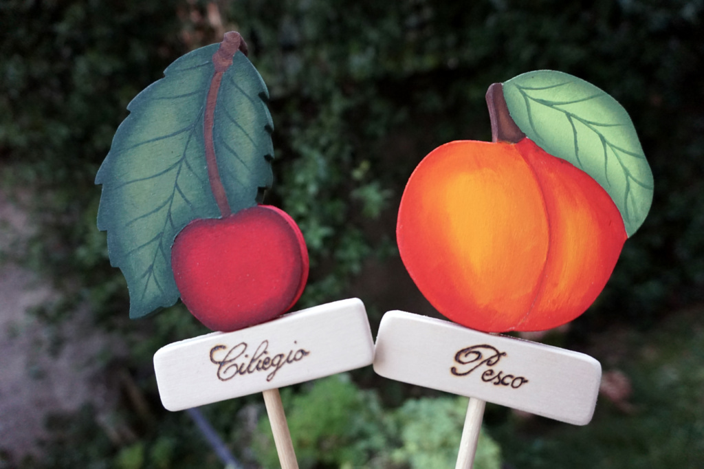 Centrotavola-Frutta